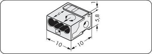 Verbindungsklemme flexibel: - starr: 0.28-0.5 mm² Polzahl: 4 WAGO 243-314 400 St. Licht-Grau