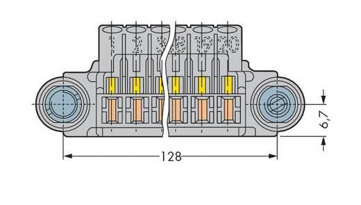 WAGO 246-111 Stiftleiste (Standard) 320 Polzahl Gesamt 20 15 St.