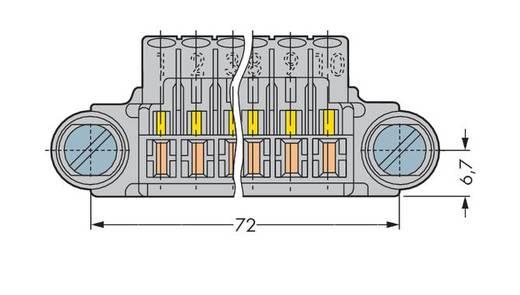 Buchsengehäuse-Kabel 246 Polzahl Gesamt 10 WAGO 246-131 30 St.