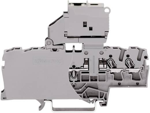 Sicherungsklemme 6.20 mm Zugfeder Belegung: L Grau WAGO 2002-1811 1 St.