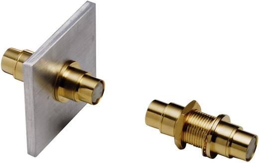 Mini-DIN-Einbauadapter, vollvergoldet
