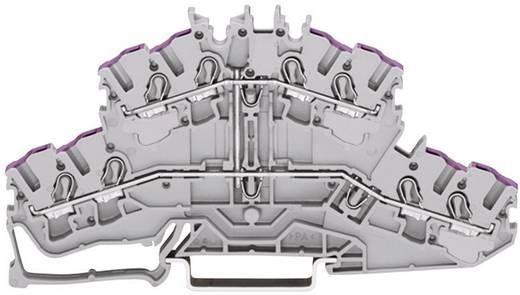 Doppelstock-Durchgangsklemme 5.20 mm Zugfeder Belegung: L Grau WAGO 2002-2408 1 St.