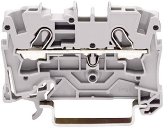 Schutzleiterklemme 6.20 mm Zugfeder Belegung: PE Grün-Gelb WAGO 2004-1207 1 St.