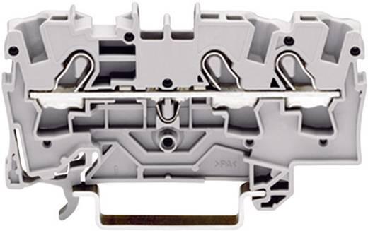 Schutzleiterklemme 6.20 mm Zugfeder Belegung: PE Grün-Gelb WAGO 2004-1307 1 St.