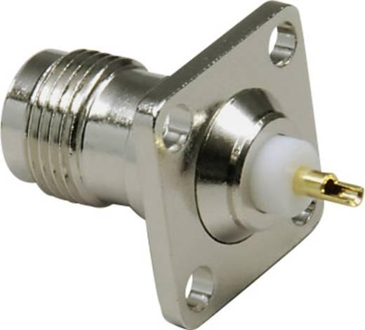 TNC-Steckverbinder Flanschbuchse, Kontakte gerade 50 Ω BKL Electronic 0405059 1 St.