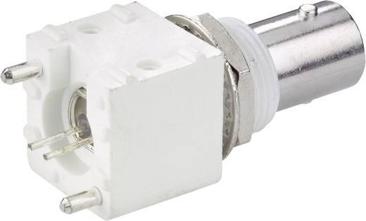 BNC-Steckverbinder Buchse, Einbau vertikal 50 Ω 1 St.