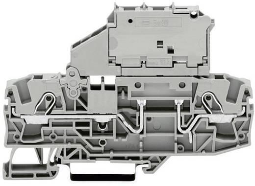 Sicherungsklemme 7.50 mm Zugfeder Belegung: L Grau WAGO 2006-1611 1 St.