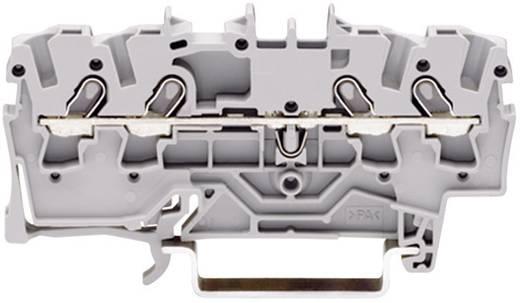 Schutzleiterklemme 3.50 mm Zugfeder Belegung: PE Grün-Gelb WAGO 2000-1407 1 St.