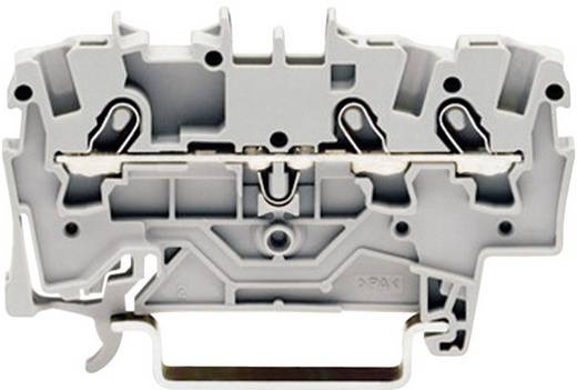 Durchgangsklemme 4.20 mm Zugfeder Belegung: L Grau WAGO 2001-1301 1 St.