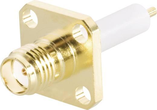 SMA-Steckverbinder Buchse, Einbau vertikal 50 Ω BKL Electronic 409070 1 St.