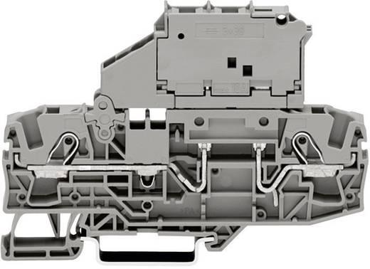 Sicherungsklemme 7.50 mm Zugfeder Belegung: L Grau WAGO 2006-1621 1 St.