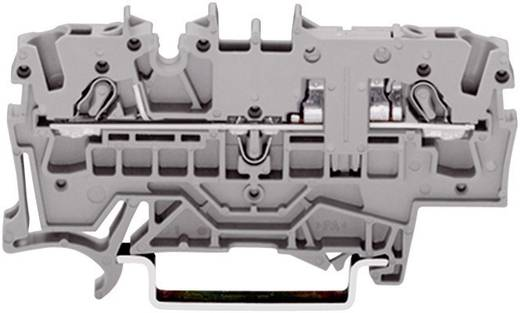 Durchgangsklemme 5.20 mm Zugfeder Belegung: L Grau WAGO 2002-1601 1 St.