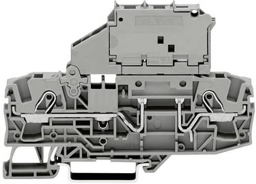 Sicherungsklemme 7.50 mm Zugfeder Belegung: L Grau WAGO 2006-1631 1 St.