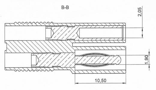 Laborsteckverbinder-Sortiment Stecker, gerade, Buchse, gerade Stift-Ø: 2 mm Rot, Schwarz Schnepp 4 Teile
