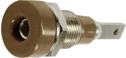 Laborbuchse Buchse, Einbau vertikal Stift-Ø: 2 mm Braun Stäubli LB-I2R 1 St.