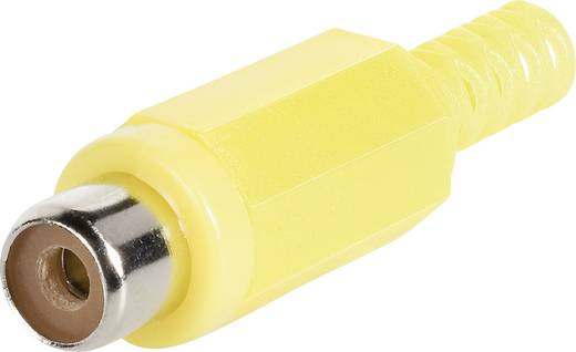 Cinch-Steckverbinder Buchse, gerade Polzahl: 2 Gelb BKL Electronic 1108012/T 1 St.