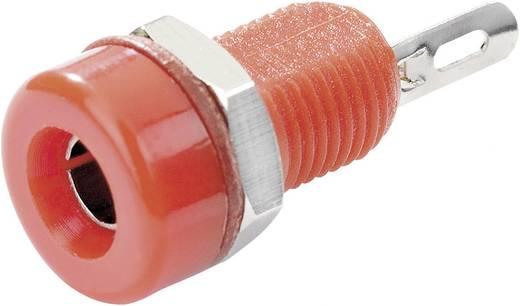 Laborbuchse Buchse, Einbau vertikal Stift-Ø: 4 mm Rot SCI R1-16A Red 1 St.