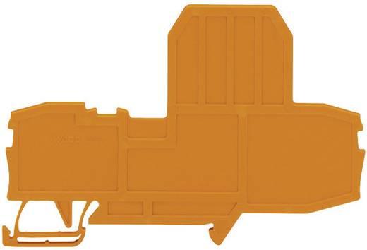 Endplatte für Sicherungsklemmen. WAGO Inhalt: 1 St.