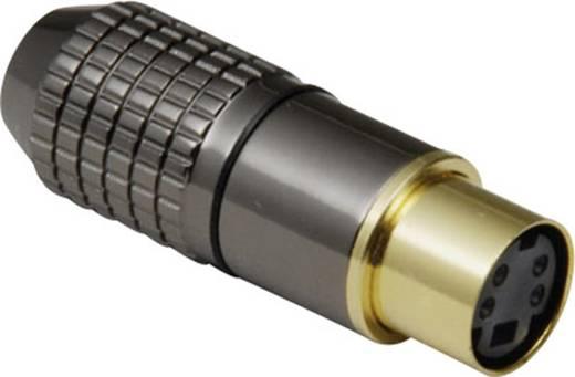 Miniatur-DIN-Rundsteckverbinder Buchse, gerade Polzahl: 4 Schwarz BKL Electronic 204023 1 St.