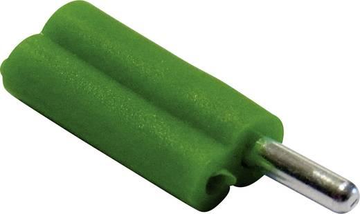 Büschelstecker Stecker, gerade Stift-Ø: 2 mm Grün Schnepp F 2020 1 St.