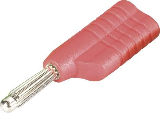 Büschelstecker Stecker, gerade Stift-Ø: 4 mm Rot Schnepp S 4041 L rt 1 St.