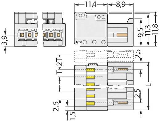 WAGO 733-205 Stiftgehäuse-Kabel 733 Polzahl Gesamt 5 Rastermaß: 2.50 mm 1 St.