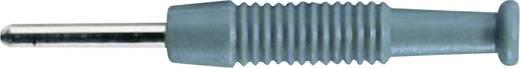 Miniatur-Bananenstecker Stecker, gerade Stift-Ø: 2 mm Grün SKS Hirschmann MST 3 1 St.