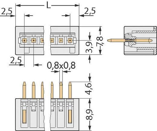 WAGO 733-333 Stiftgehäuse-Kabel 733 Polzahl Gesamt 3 Rastermaß: 2.50 mm 1 St.