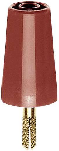 Übergangsstecker Stecker 4 mm - Buchse 4 mm Rot MultiContact A-SLK4 1 St.
