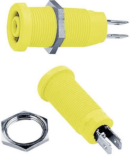 Sicherheits-Laborbuchse Buchse, Einbau vertikal Stift-Ø: 4 mm Grün-Gelb MultiContact XEB-1R 1 St.