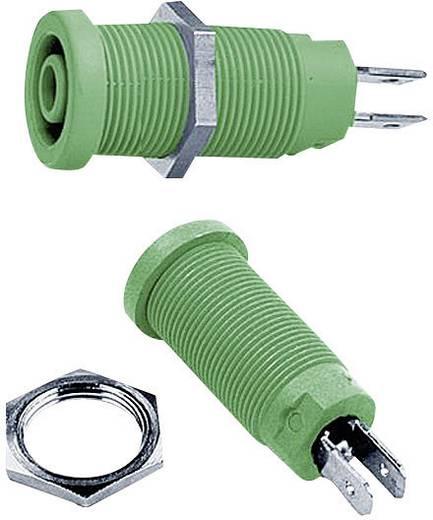 Sicherheits-Laborbuchse Buchse, Einbau vertikal Stift-Ø: 4 mm Grün MultiContact XEB-1R 1 St.