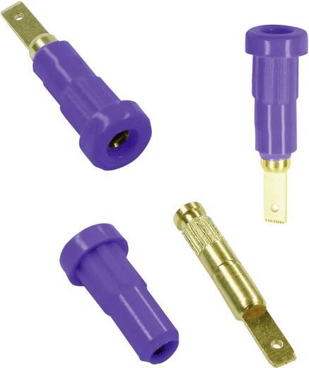 Laborbuchse Buchse, Einbau vertikal Stift-Ø: 2 mm Blau Stäubli EB2 1 St.