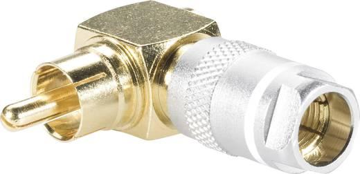 Cinch-Steckverbinder Stecker, gewinkelt Polzahl: 2 Rot, Weiß Kash 24K003 2 St.