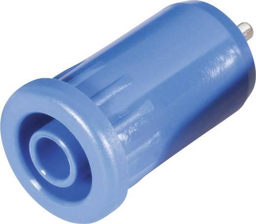Sicherheits-Laborbuchse Buchse, Einbau vertikal Stift-Ø: 4 mm Blau Schnepp BU 4800 bl 1 St.