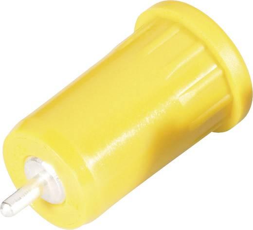 Sicherheits-Laborbuchse Buchse, Einbau vertikal Stift-Ø: 4 mm Gelb Schnepp BU 4800 ge 1 St.