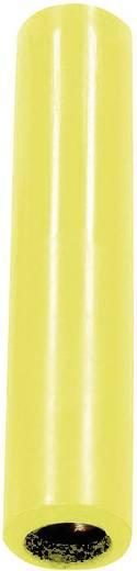 Verbindungskupplung Buchse 4 mm - Buchse 4 mm Gelb Stäubli KK4/4; 1 St.