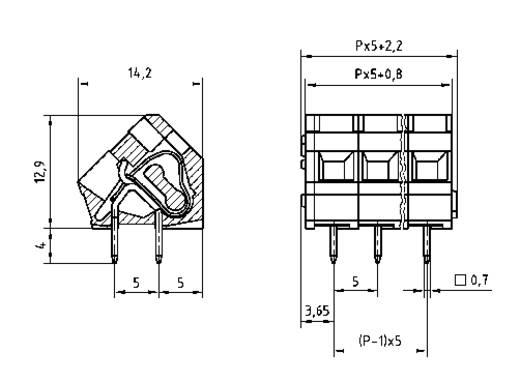 PTR AK3000/2-5.0 Federkraftklemmblock 2.50 mm² Polzahl 2 Kiesel-Grau 1 St.