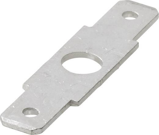 Steckzunge Steckbreite: 4.8 mm Steckdicke: 0.8 mm 180 ° Unisoliert Metall Vogt Verbindungstechnik 3821R.67 1 St.