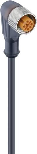 Sensor-/Aktor-Steckverbinder, konfektioniert M12 Buchse, gewinkelt 5 m Polzahl: 3 Lumberg Automation 43597 RKWT 4-3-224/