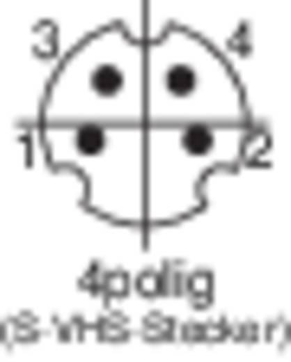 Miniatur-DIN-Rundsteckverbinder Stecker, gerade Polzahl: 4 Schwarz BKL Electronic 204018 1 St.
