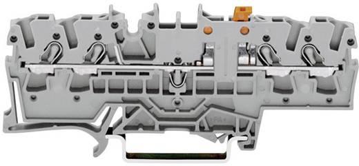 Trennklemme 5.20 mm Zugfeder Belegung: L Grau WAGO 2002-1871 1 St.