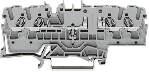 Basisklemme 5.20 mm Zugfeder Belegung: L Grau WAGO 2002-1861 1 St.