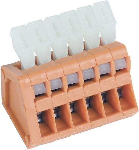 Federkraftklemmblock 0.50 mm² Polzahl 10 AKZ3191/10KD-2.54 PTR Orange 1 St.