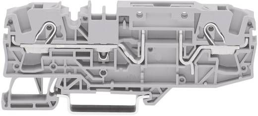 Basisklemme 7.50 mm Zugfeder Belegung: L Grau WAGO 2006-1661 1 St.