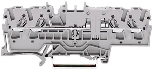 Durchgangsklemme 5.20 mm Zugfeder Belegung: L Grau WAGO 2002-1801 1 St.