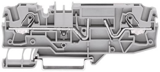 Sicherungsklemme 5.20 mm Zugfeder Belegung: L Grau WAGO 2002-1681 1 St.