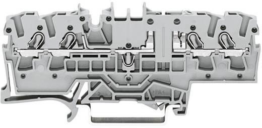 Sicherungsklemme 5.20 mm Zugfeder Belegung: L Grau WAGO 2002-1881 1 St.