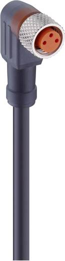 Sensor-/Aktor-Steckverbinder, konfektioniert M8 Buchse, gewinkelt 2 m Polzahl: 4 Lumberg Automation 28382 RKMWV 4-225/2