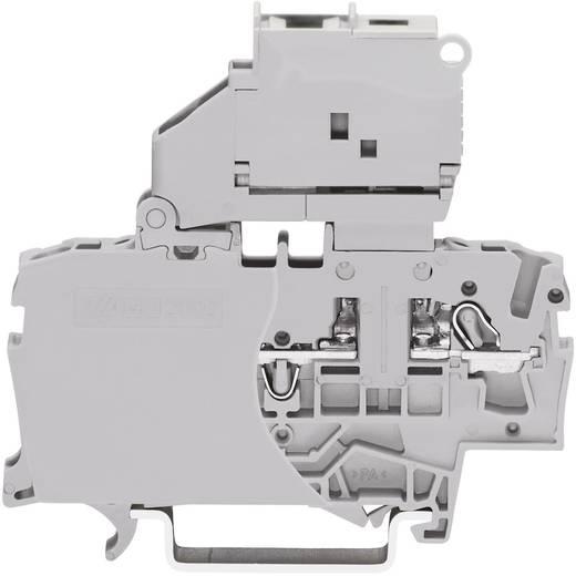 Sicherungsklemme 6.20 mm Zugfeder Belegung: L Grau WAGO 2002-1611 1 St.