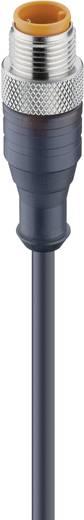 Sensor-/Aktor-Steckverbinder, konfektioniert M12 Stecker, gerade 5 m Polzahl (RJ): 4 Lumberg Automation 11810 RST 4-225/